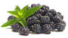 Vitamine in Brombeeren