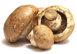 Champignons Kalorien
