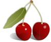 Inhaltsstoffe Nährwert Kirschen