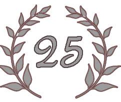 Silberhochzeit 25