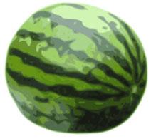 Gewicht einer Wassermelone